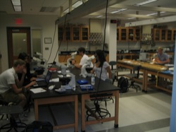 Students using smear slides to describe cores in the laboratory
