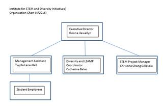 Institute for STEM and Diversity Initiatives Organizational Chart