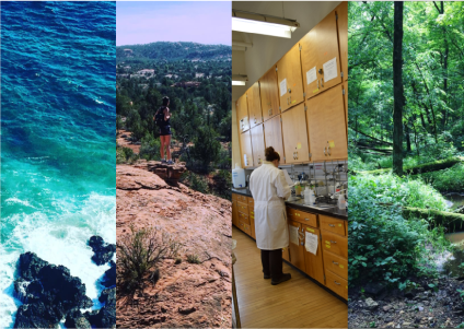 Composite image of research settings: coast, rocks, lab, forest