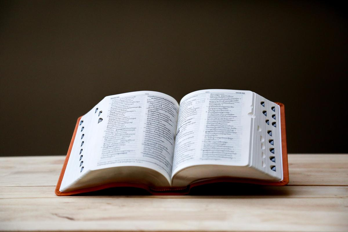 Picture of an open dictionary