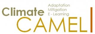 camel-logo