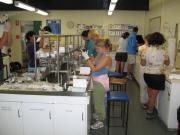 Australia lab group