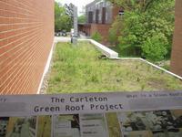 Carleton Green Roof