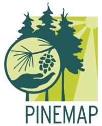 Pinemap 2