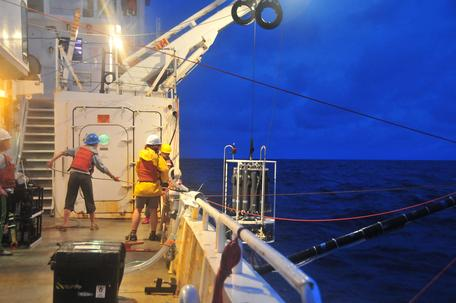Deploying instruments to study marine food chain