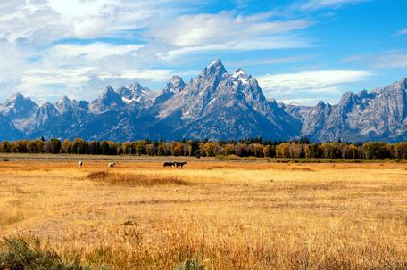 The Grand Tetons in the Fall