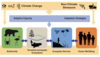 Figure 7.1: Climate Change, Ecosystems, and Ecosystem Services