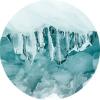 warm arctic