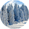 wintry-2993370_1280.png