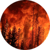 Wildfire circle
