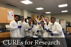 CURE as Research