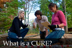 What is a CURE?