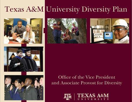 TAMU diversity plan image