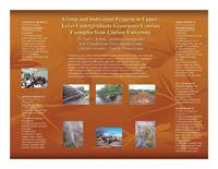 Ryberg poster, 2007 workshop on preparing geoscience professionals