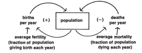 Birth and death feedback loops