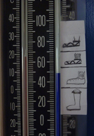 Shoe Thermometer