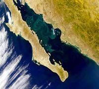Baja California and Gulf of California