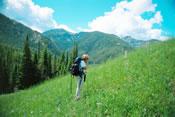 Field work in Montana