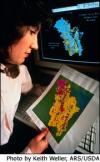 Teacher examining data image