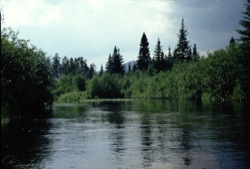 kennebago river