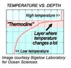 themocline graph