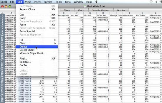 delete column in spreadsheet