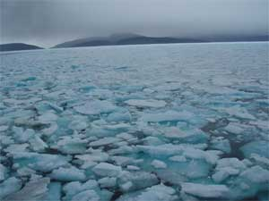 sea ice near the shore