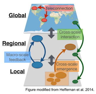 Macrosystems ecology schematic