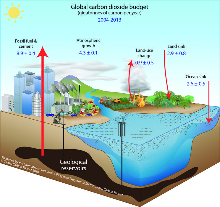 The Carbon Cycle: Fossil Fuels