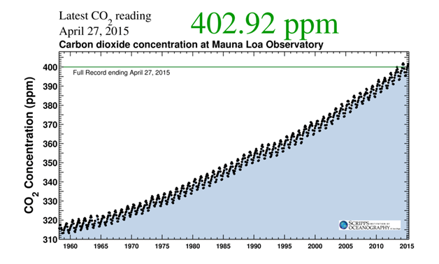 CO2 Concentration in the Atmosphere at Mauna Loa