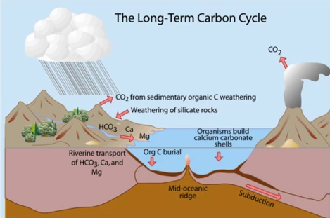 The Long Term Geological Carbon Cycle