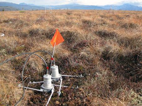 Measuring soil respiration in Toolik Alaska