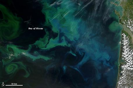 NASA Terra satellite natural color image of phytoplankton bloom in the Bay of Biscay