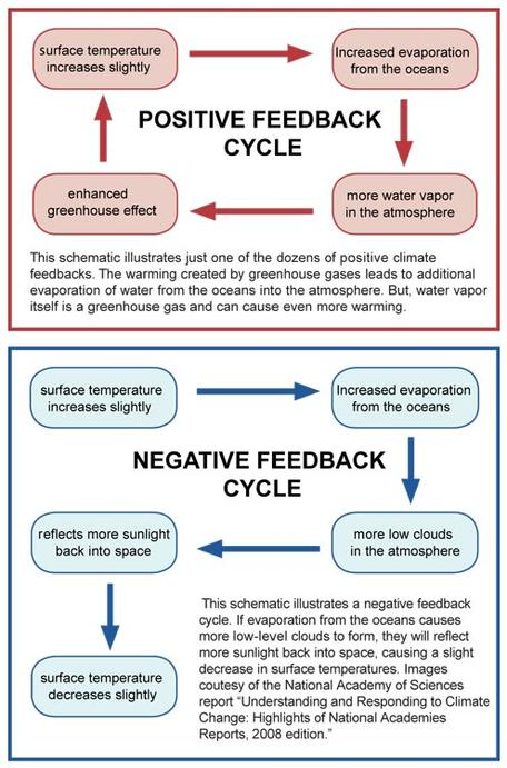 2C: Carbon Cycle Feedbacks