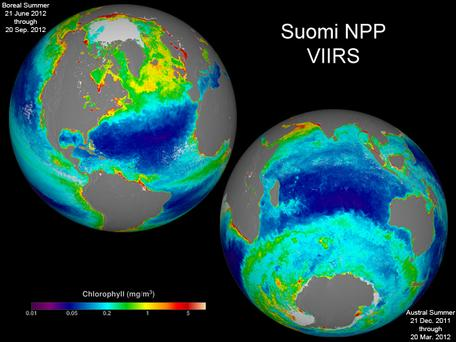 Suomi NPP chlorophyll data