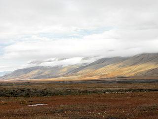 Tundra 300