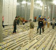 scientists looking at cores