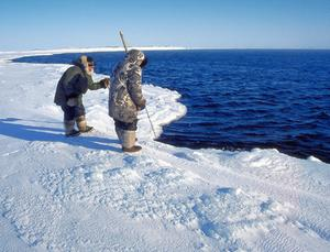 Inuit testing ice thickness