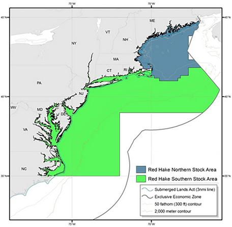 Red Hake stock areas
