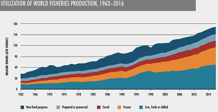 Utilization of World Fishery Production
