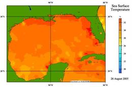 Sea Surface Temperature, Gulf of Mexico, 26 August, 2005