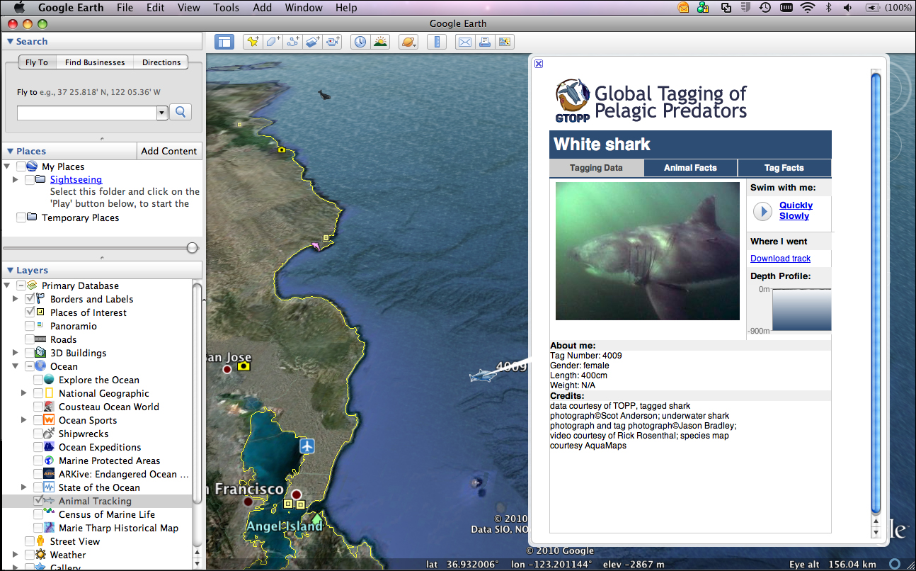 Exploring ocean data with google earth shark4009ge gumiabroncs Gallery