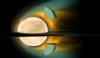 Venus grand tour planets.PNG