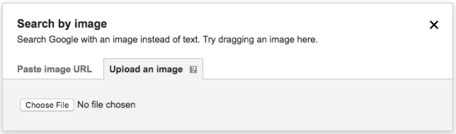 Google Upload an Image