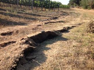South Napa 2014 Damage