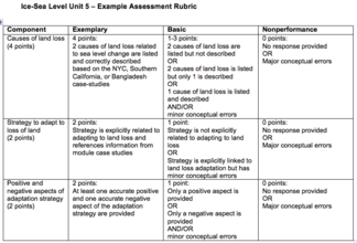 Unit 5 Assessment Rubric Image
