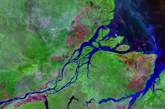 Arial view of Amazon river basin
