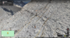 Weathered limestone, Mt. Bogart, Canadian Rockies