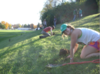 Wittenberg students planting trees on campus.