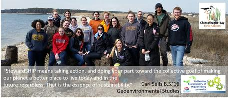 Environmental Restoration and Service Learning at the Chincoteague Bay Field Station